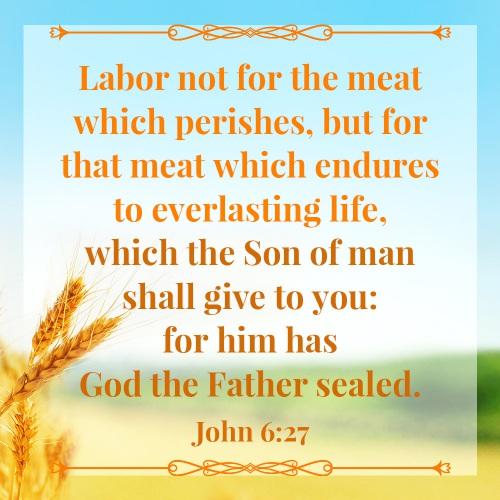 Bible Verse – John 6:27