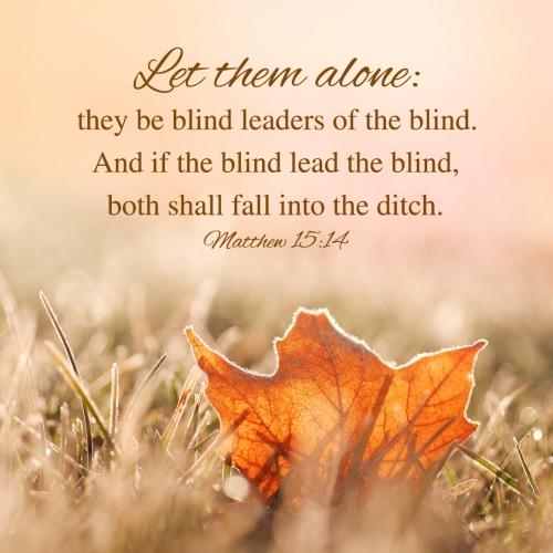 Bible Verse - Matthew 15:14