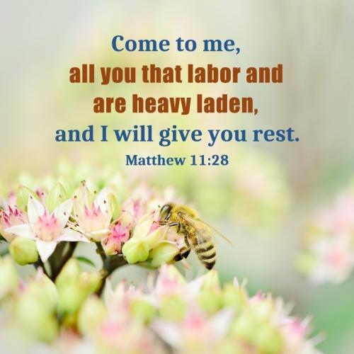 Bible Verse – Matthew 11:28, Bible Verse – Matthew 11:28