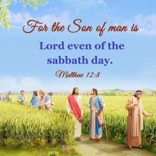 Bible Verse – Matthew 12:8, For the Son of man is Lord even of the sabbath day.