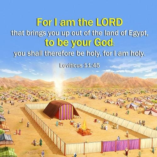 Bible Verse – Leviticus 11 -45