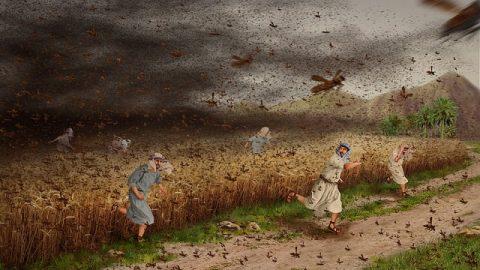 Exodus 10 - The Eighth Plague: Locusts - Ten plagues of Egypt