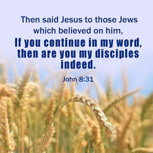 Bible Verse – John 8:31