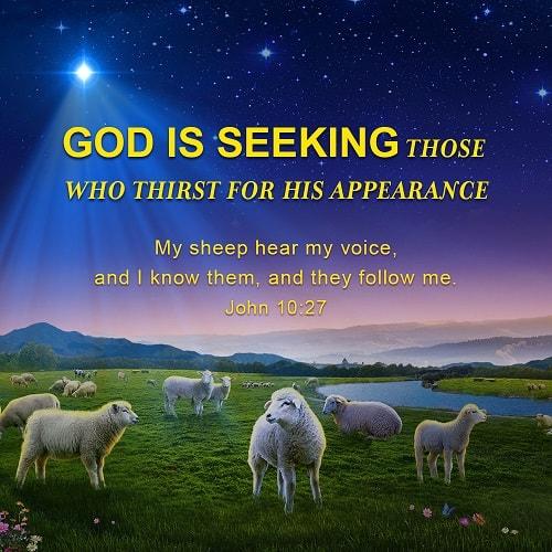 Bible Verse - John10:27