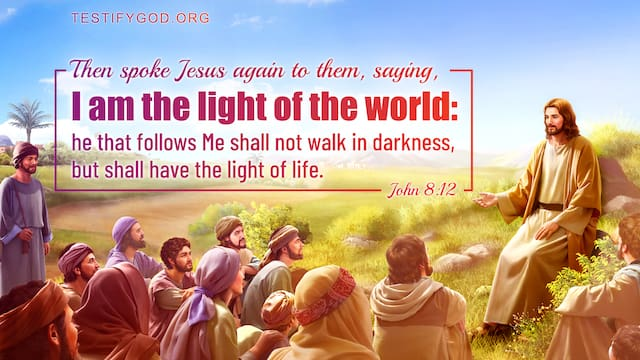Bible Verses About Hope, John 8:12  I am the light of the world: he that follows me shall not walk in darkness, but shall have the light of life.