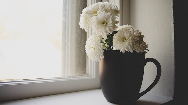 Salvation Testimony- White chrysanthemums on the windowsill
