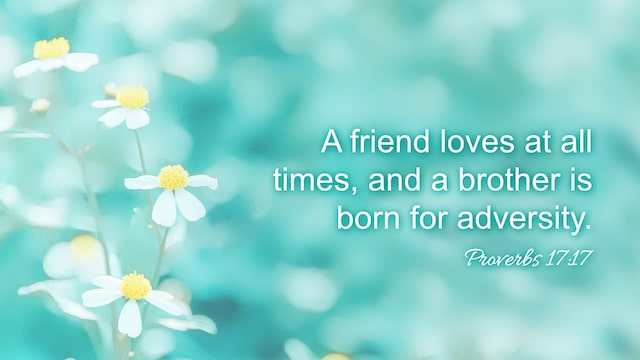 "Proverbs 17:17 ""A friend loves at all times, and a brother is born for adversity."""