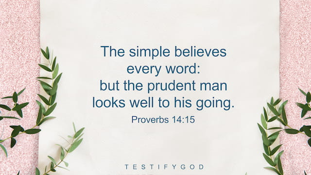Proverbs 14:15, The simple believes every word: but the prudent man looks well to his going.