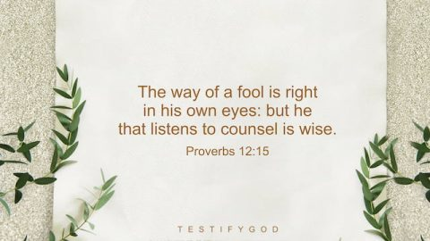 Accept the Truth – Reflection on Proverbs 12:15