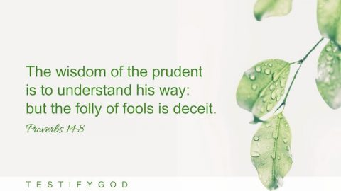 Be Wise and Prudent – Reflection on Proverbs 14:8