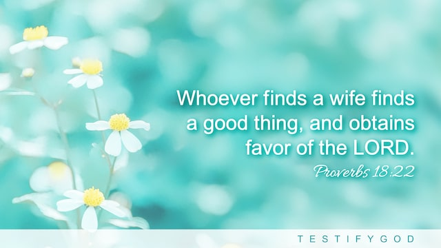 Proverbs 18:22 meaning,Reflection on Proverbs 18:22, Whoever finds a wife finds a good thing, and obtains favor of the LORD.