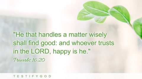 Happy Are Those Who Trust in God – Reflection on Proverbs 16:20
