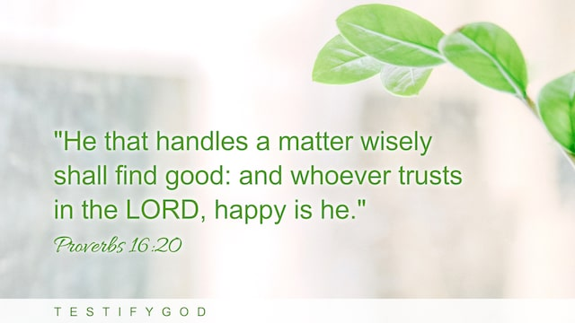 """Proverbs 16:20 """"He that handles a matter wisely shall find good: and whoever trusts in the LORD, happy is he."""""""