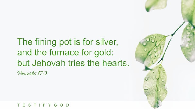 "Proverbs 17:3 ""The fining pot is for silver, and the furnace for gold: but Jehovah tries the hearts."""