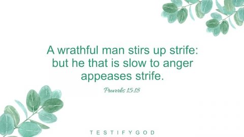 Stop Being Angry and Avoid Strife – Reflection on Proverbs 15:18