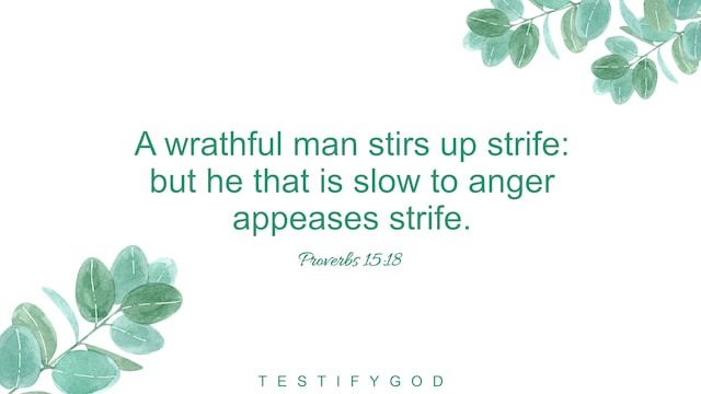 Proverbs 15:18 A wrathful man stirs up strife: but he that is slow to anger appeases strife.