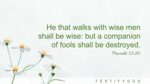 Walks With Wise Men – Reflection on Proverbs 13:20