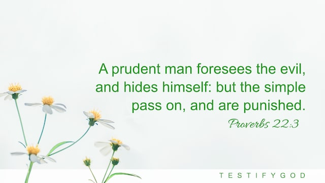 Proverbs 22:3 A prudent man foresees the evil, and hides himself: but the simple pass on, and are punished.