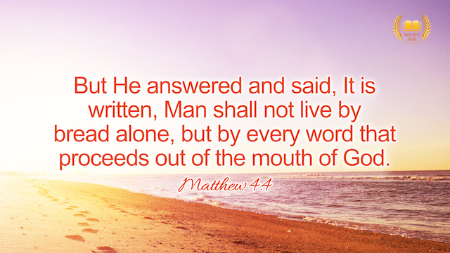 """Matthew 4:4 """"But he answered and said, It is written, Man shall not live by bread alone, but by every word that proceeds out of the mouth of God""""."""