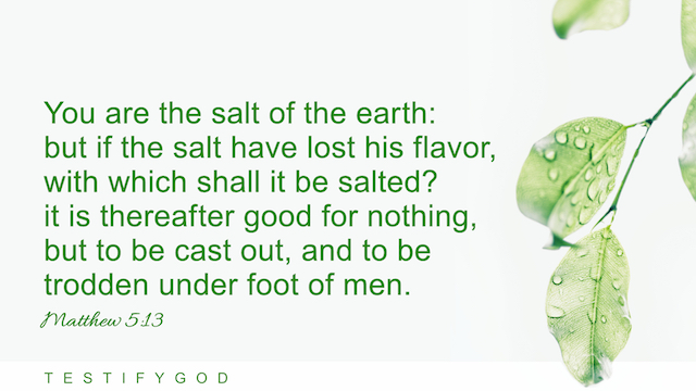 """Matthew 5:13 """"You are the salt of the earth: but if the salt have lost his flavor, with which shall it be salted? it is thereafter good for nothing, but to be cast out, and to be trodden under foot of men."""""""