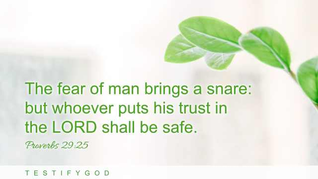 "Proverbs 29:25 ""The fear of man brings a snare: but whoever puts his trust in the LORD shall be safe."""