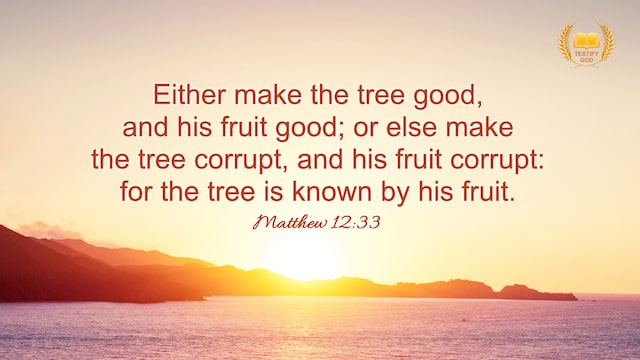 A Tree Is Known By Its Fruit, Matthew 12:33