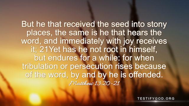 Gospel for Today Matthew 13:20–21
