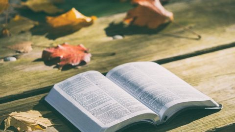 Is All of God's Word Really in the Bible