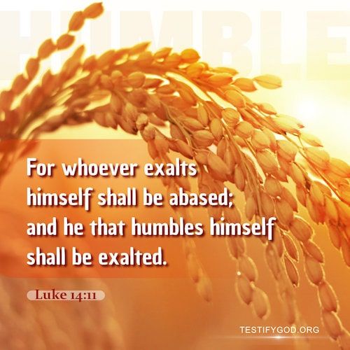 Learn to Be Humble and Let Go of Ourselves – Luke 14:11