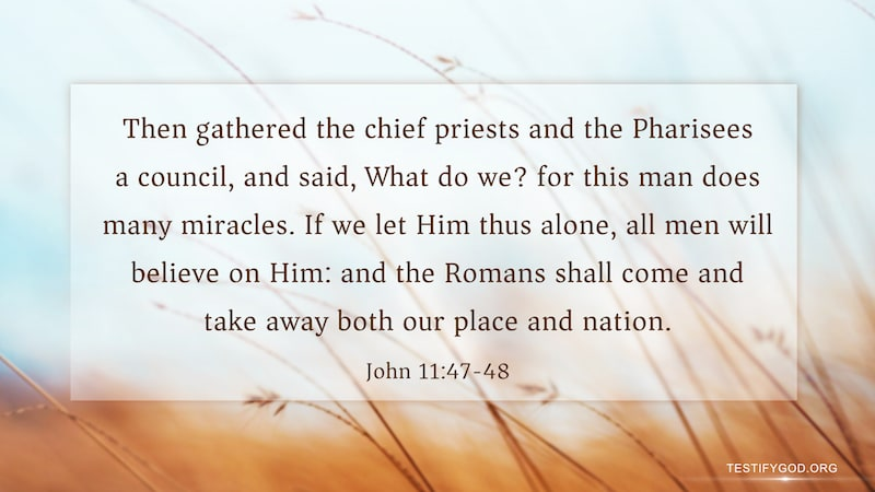 Gospel Reflection on John 11:47-48,The Pharisees Discussed Framing the Lord Jesus