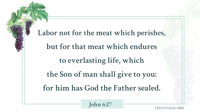 Reflection on John 6:27, We Shall Pursue Everlasting Life