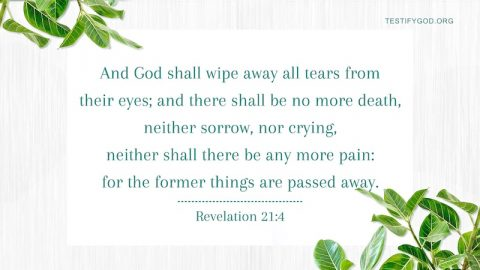 No More Tears in Heaven – Reflection on Revelation 21:4