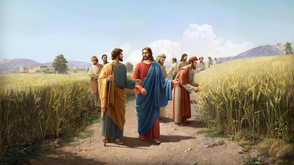the Lord Jesus Work on the Sabbath